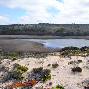 Lagoa da Sancha corre risco dedesaparecer