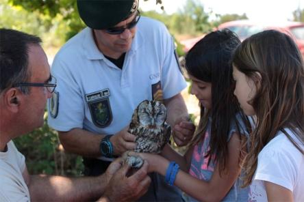 Após um período de reabilitação no Centro de Recuperação de Animais Selvagens de Santo André, onze aves voltaram ao seu habitat