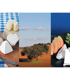 Empresas & Negócios: Caprino, queijo feito comamor