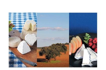 A Caprino de Odemira é uma queijaria que aposta na sofisticação mantendo os sabores mais puros, produzidos de forma artesanal.