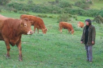 Edite Botelho, presidente da Associação de Agricultores do Litoral Alentejano