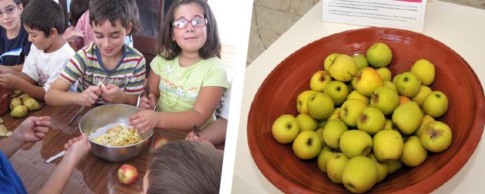 Em entrevista, a nutricionista Cláudia Salgueiro fala da alimentação das crianças nas escolas de Santiago do Cacém, a propósito do Dia Mundial da Alimentação, que se assinala a 16 de outubro  Foto: CMSC 