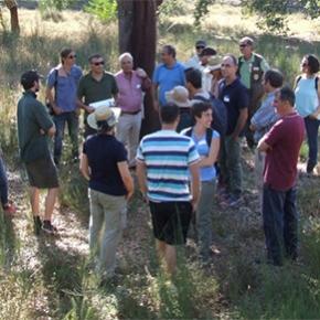 Congresso Mundial de sistemas silvo-pastoris visita ReservaNatural