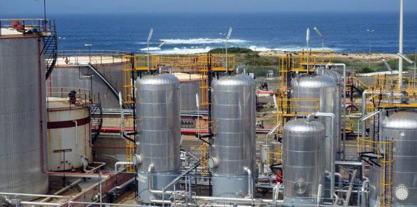 A unidade inaugurada em Sines em junho de 2015 já recebeu visitas de representantes de empresas e portos para estudar o projeto
