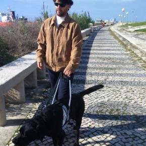 """Jovializar por aí: """"Das trevas à luz: a distância a percorrer até ter um cão-guia chamadoUolly"""""""