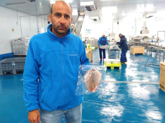 Nova fábrica da empresa de Ermidas cria 40 postos de trabalho  Foto: Helga Nobre 