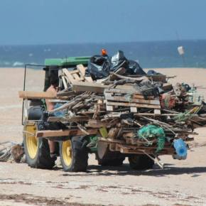 ALA juntou 260 voluntários para limpar 15 km da Costa de SantoAndré