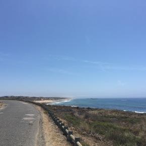 Troço entre São Torpes e Porto Covo alvo derequalificação
