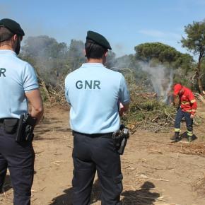 Operação da GNR alerta proprietários para uso correto dofogo