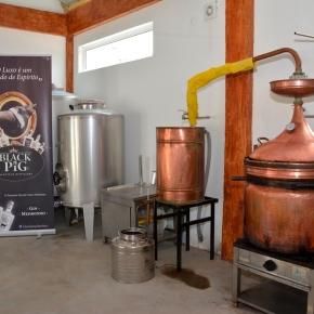 Covid-19: Autarquia de Santiago do Cacém recebe 100L de álcool oferecidos pela BlackPig