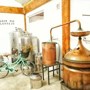 """Covid-19: HLA recebe 100L de álcool desinfetante da destilaria """"BlackPig"""""""
