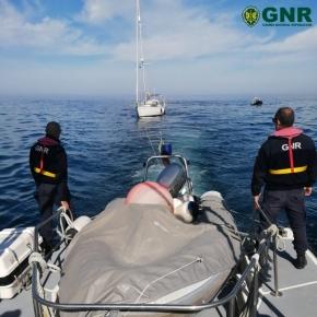 Veleiro foi abalroado por duas orcas ao largo deSines
